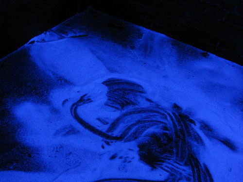 A small dark room with glowing blue powder on the floor.